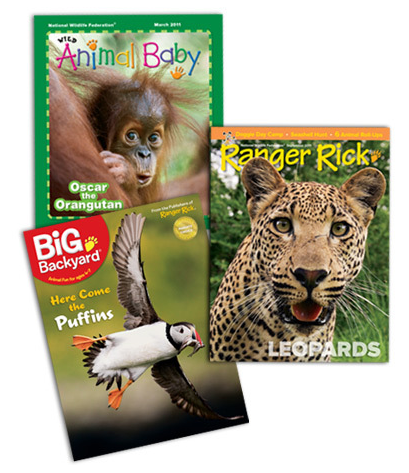 animal baby or big backyard magazine for 10 year happy money saver
