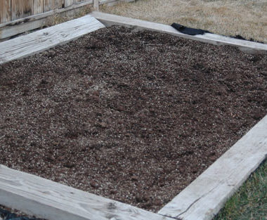 My Adventures in Gardening Part 2 – Where did my Dirt Go?