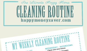 free printable cleaning routine