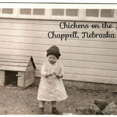 Why I want to raise Chickens : Happy Homesteading