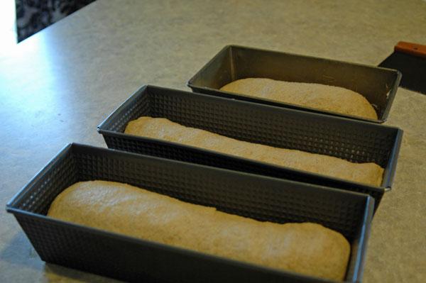 bread-soap-112