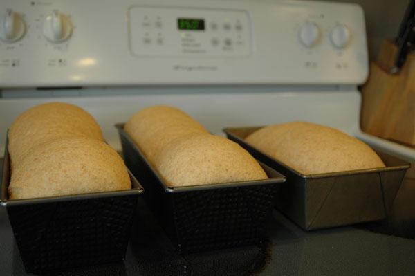 bread-soap-140