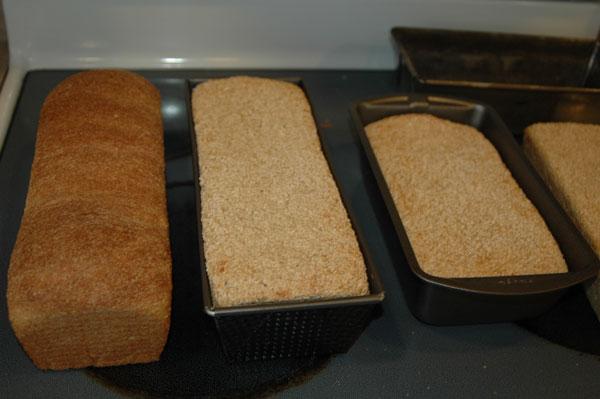 bread-soap-212