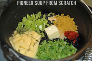 pioneersoup