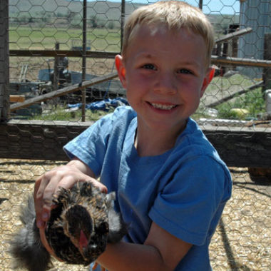 A trip to Trish's Farm, Introducing our 2 new Chicks + help us name them!