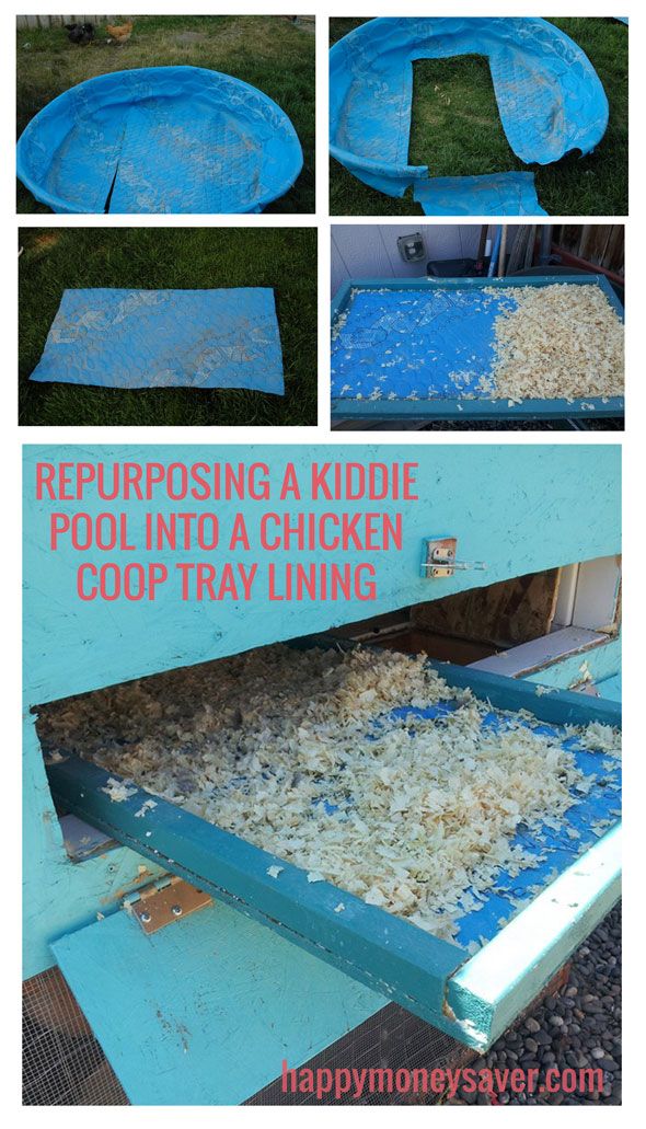 Repurposing a kiddie pool into a chicken coop tray liner