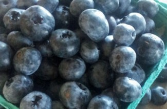 Freezing Blueberries {Best Way to Preserve Quality & Flavor}
