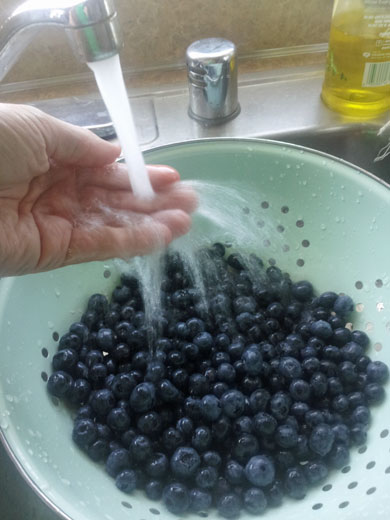 Ho to Freeze Blueberries - best way to preserve flavor for smoothies -Happymoneysaver.com