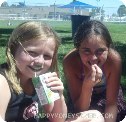Summer Fun Activities on a Budget | Free Lunch at the Park