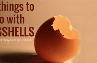 20 Things to Do With Eggshells