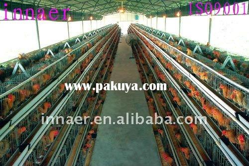 high_quality_poultry_chicken_cage