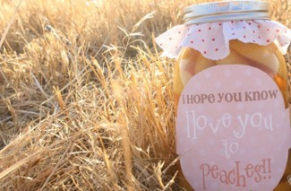 I Love You to Peaches {Gift Idea}
