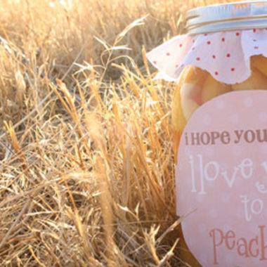 I Love You to Peaches {Gift Idea}
