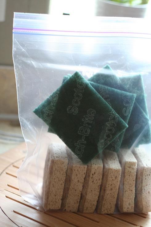 spongee2