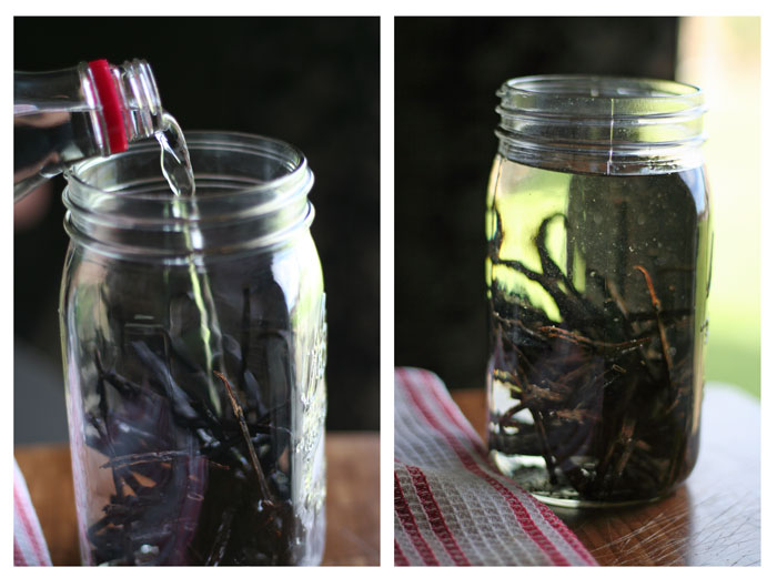 Pure Vanilla Extract using Vodka and beans.