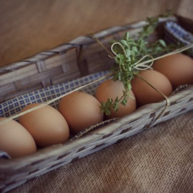 A Lovely Gift of Fresh Eggs