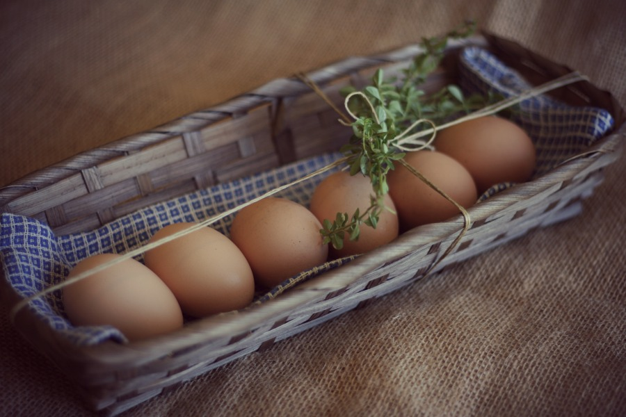 A Lovely gift of farm fresh eggs.