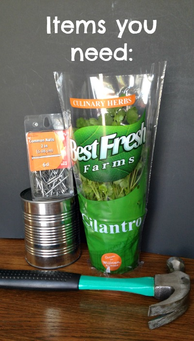 These are all the things you need to make a Recycled Can Planter with an herb garden!