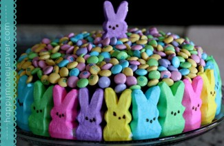 The cutest cake I have ever seen!
