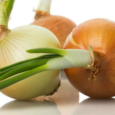 Thrifty Tip: Regrow Food from Scraps
