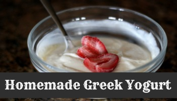 greek yogurt final