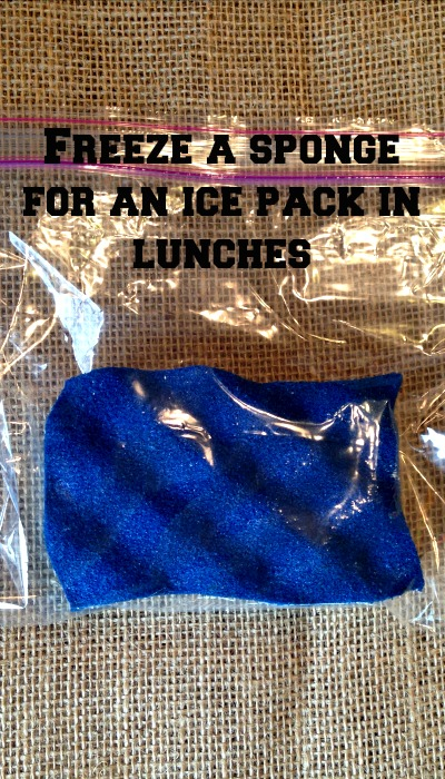 Use a sponge as an ice pack in kid's lunches!