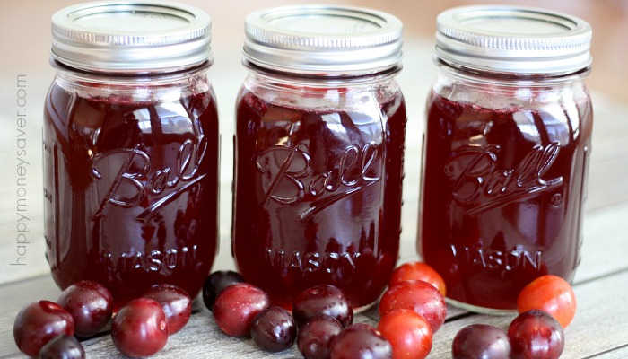 Homemade Wild Plum Jelly