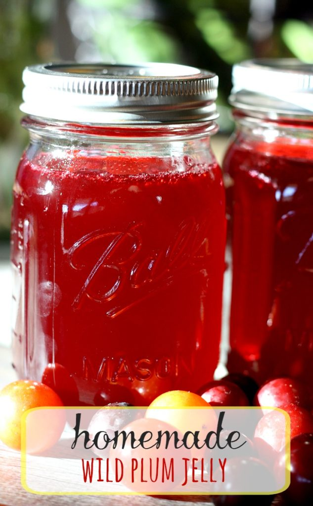 Easy recipes for plum jelly