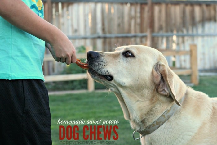 Our dog loves homemade dog chews and we save so much money. Win Win!