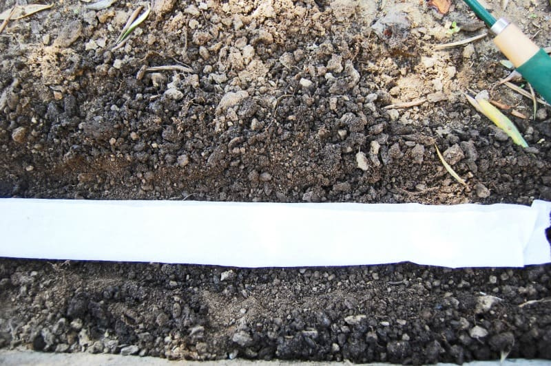 You will be surprised at how easy and inexpensive it is to make your own seed tape for the garden! It has made all the difference in the way I garden and how my garden looks! happymoneysaver.com