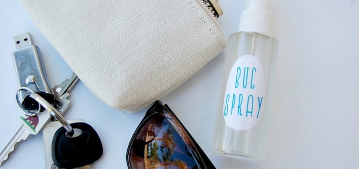 Homemade Non Toxic Bug Spray