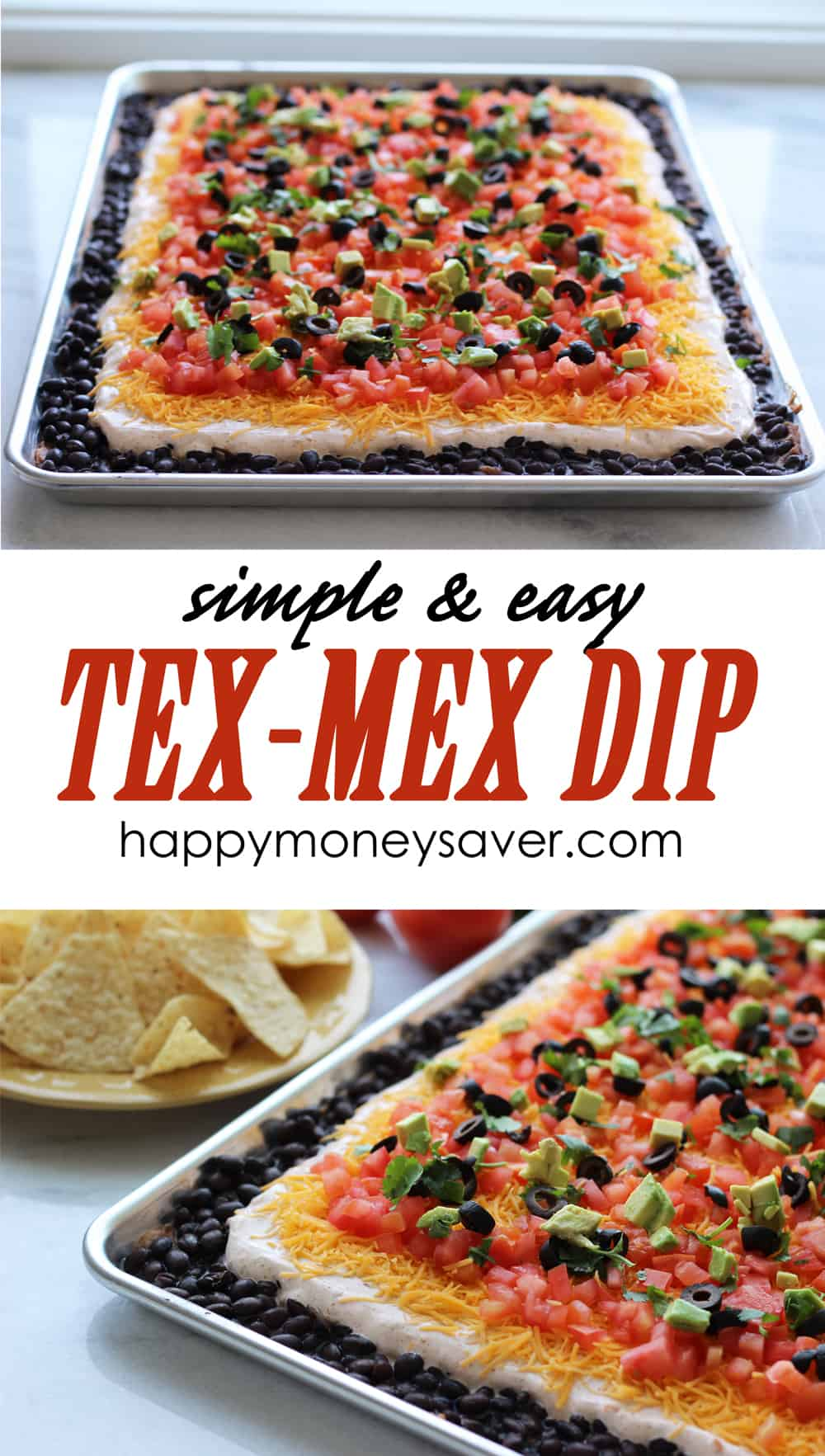 This simple and easy Tex Mex Dip recipe is not only delicious but BEAUTIFUL too! Includes 7 layers of awesome and can feed a large crowd. Tex-Mex Dip Recipe from HappyMoneySaver.com