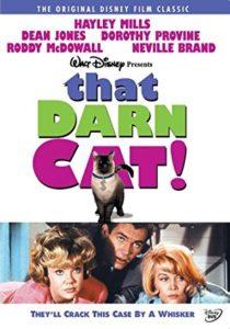 darn-cat