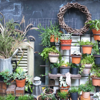 Stuck in a small space? Check out these ideas for creative gardening for small spaces!