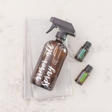 Tackle on the interior and exterior of your car with this Homemade Armor All Car Cleaning Spray. It will look and smell like new!