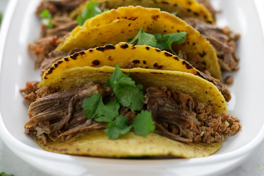 A white plate with three corn tortillas with shredded beef fajitas.