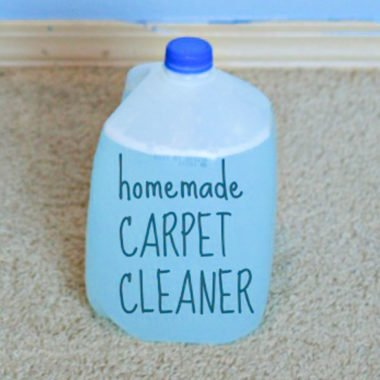 Homemade Carpet Cleaner For Machines My Secret Recipe