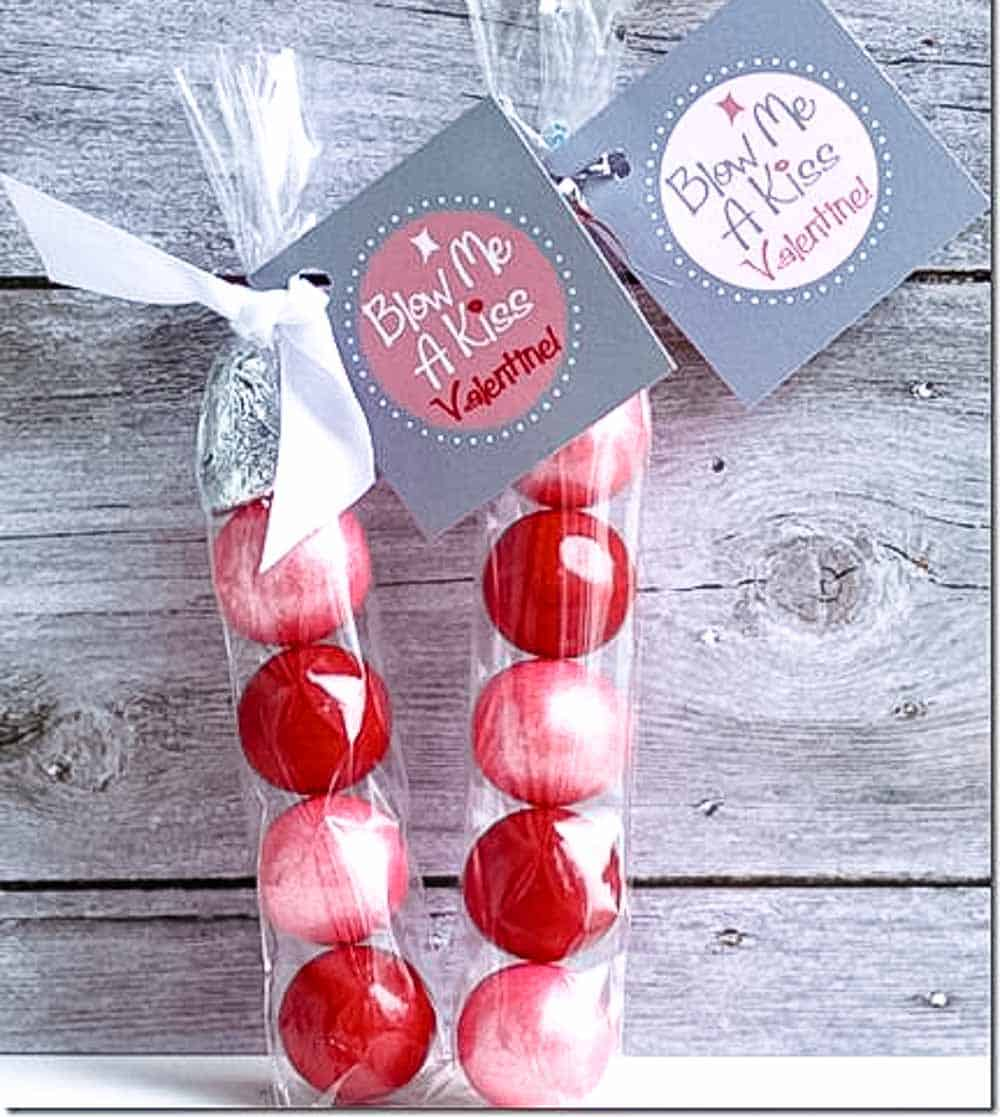 Blow me a kiss Valentines with bubble gum and a hersheys kiss on top with tag. DIY Valentines for Kids