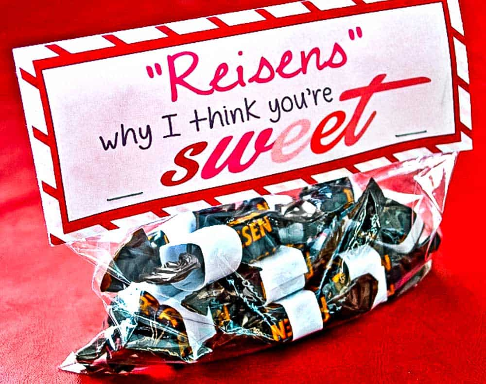 Reisens why I think your'e sweet Valentine bag topper.