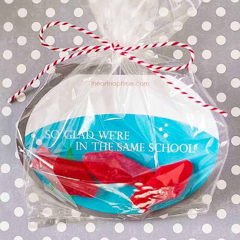 Fish bowl shaped Valentine in a plastic bag with red swedish fish candy and words so glad were in the same school.