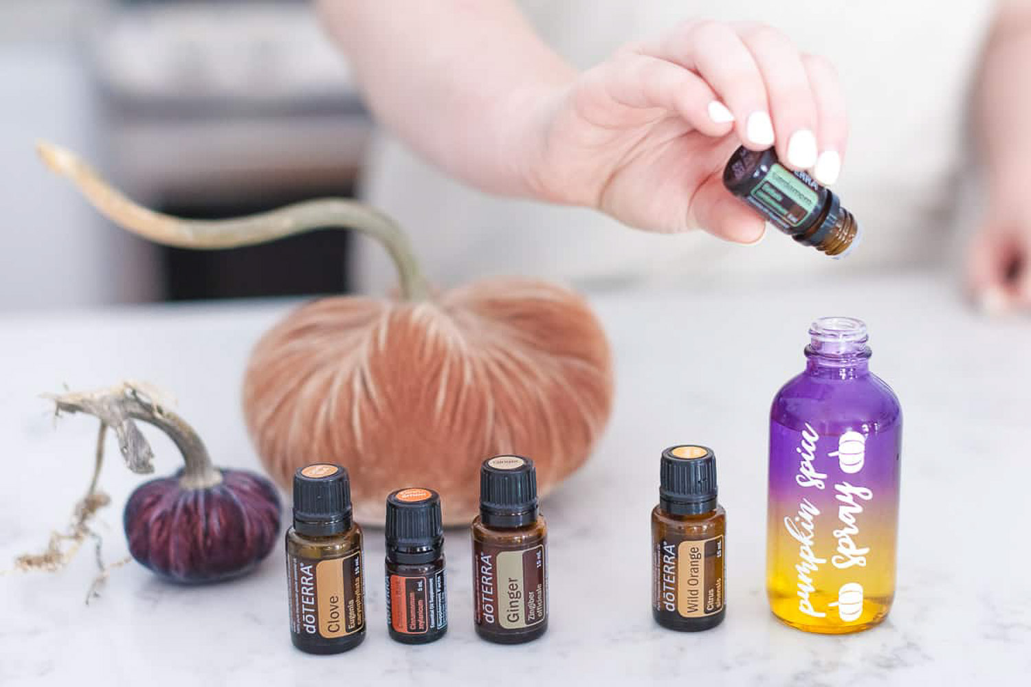 A hand pouring cardamon essential oil into a labeled bottle with 2 pumpkins and 4 bottles of essential oil on the side.