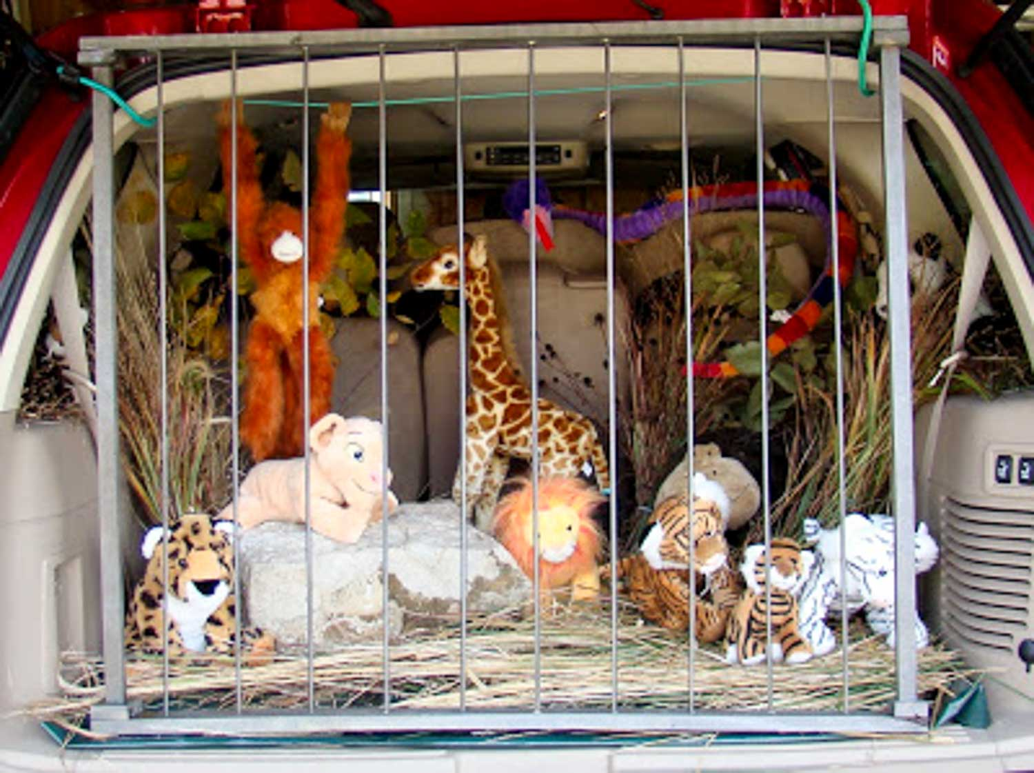 A SUV backseat filled with a fake cage and stuffed animals. This is an easy trunk or treat ideas for SUV.
