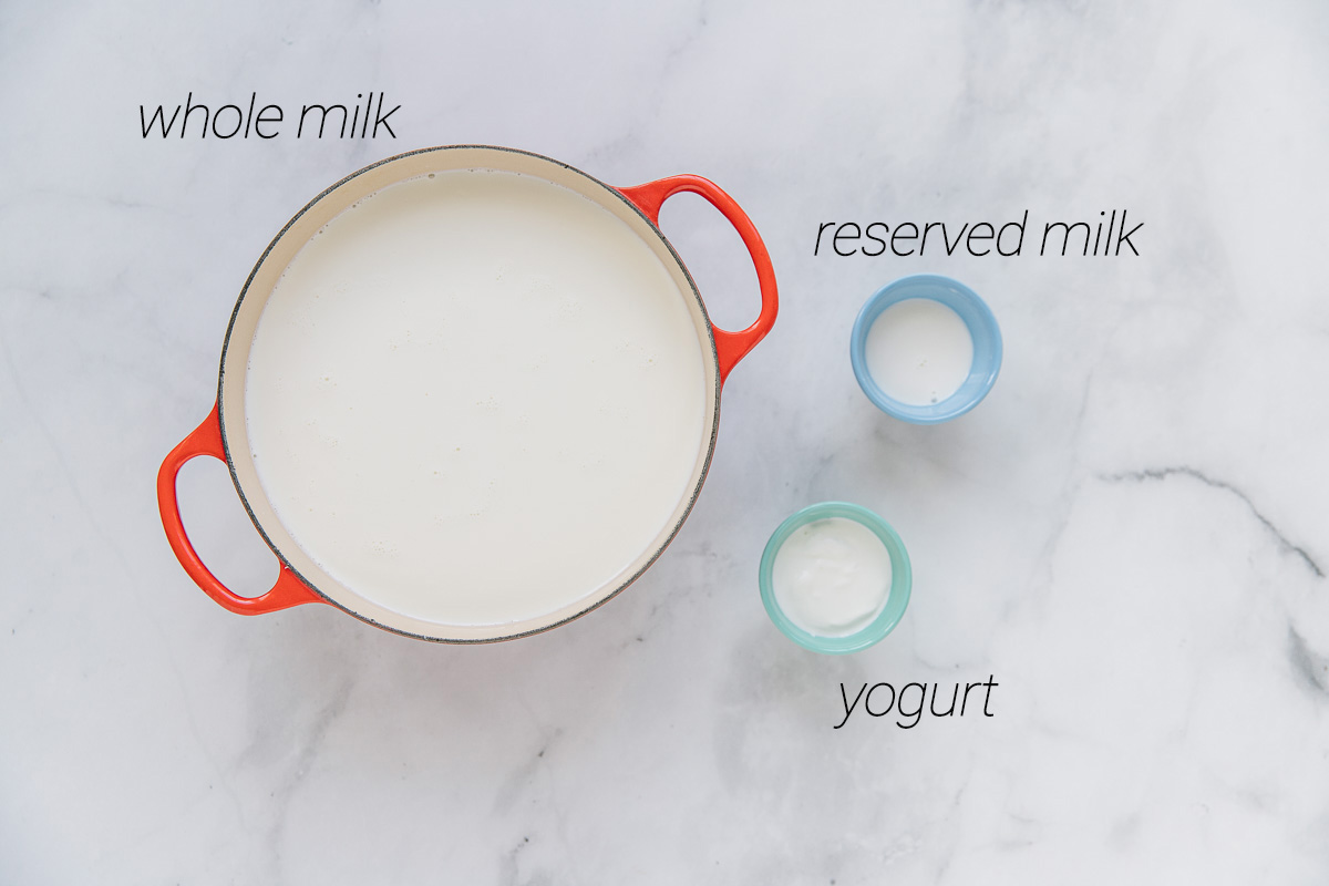 An orange Dutch oven filled with whole milk and a blue bowl filled with reserved milk and a light green bowl filled with the starter.  Above all bowls are the labeled names typed.
